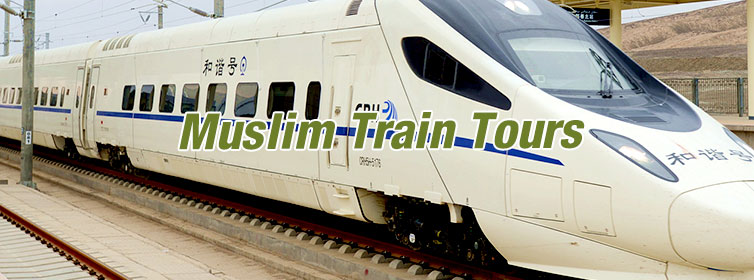 Muslim-Train-Tours(m2c-Theme1)