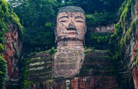 Panda Base & Leshan Giant Buddha 1 Day Join In Group Tour