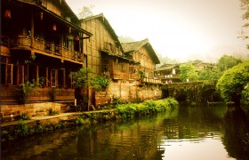 Home of Panda & Ancient Tea Route 4 Days Tour