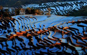 Kunming &Yuanyang Terraced Fields Natural 7 Days Tour