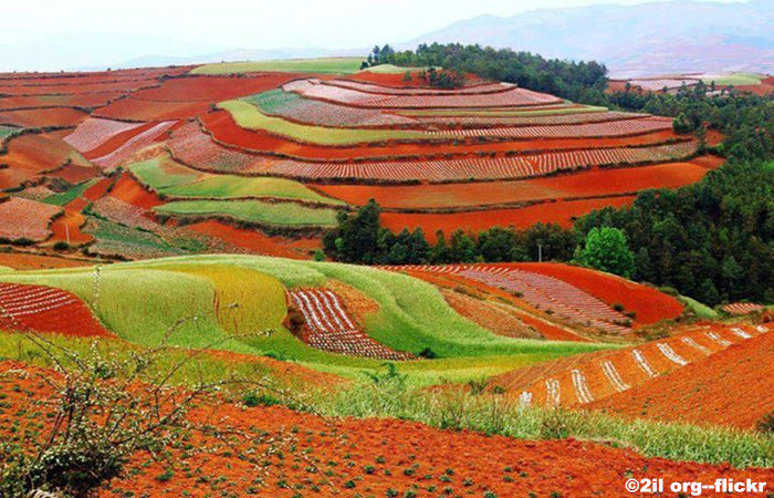 Dongchuan-Red-Land.jpg