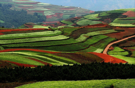 Dongchuan-Red-Soil.jpg