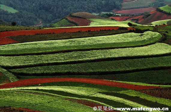 Dongchuan-Red-Soil2.jpg