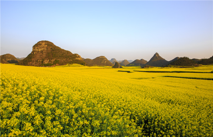 Luoping-Yunnan-Province.jpg