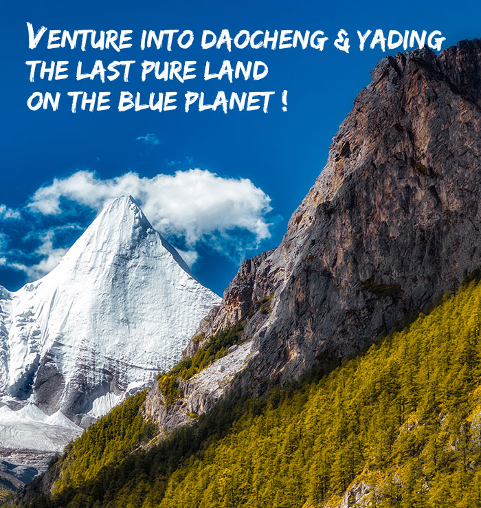 Venture into Daocheng and Yading the Last Pure Land on the Blue Planet